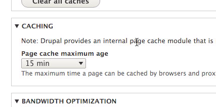 Set page cache maximum age