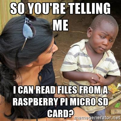 So you're telling me I can read files from a Raspberry Pi microSD card?