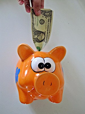 Dollar in a Piggy bank